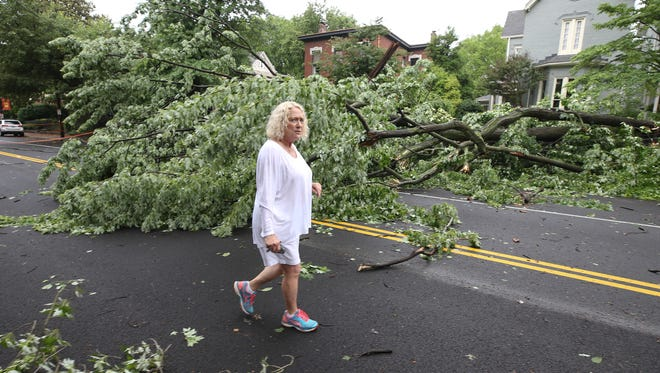 Susan Marquardt walks past a downed tree blocking 1st street near Ormsby Avenue in Old Louisville.  The tree is from Marquardt's yard and was downed by a storm that moved through Louisville on Thursday. June 1, 2018