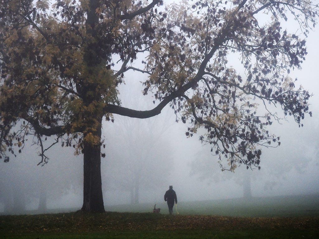 A man walks his dog at a park through heavy morning fog in London as heavy fog is expected to cause travel disruption across Britain for a second day with some cancelations at the major airports.
