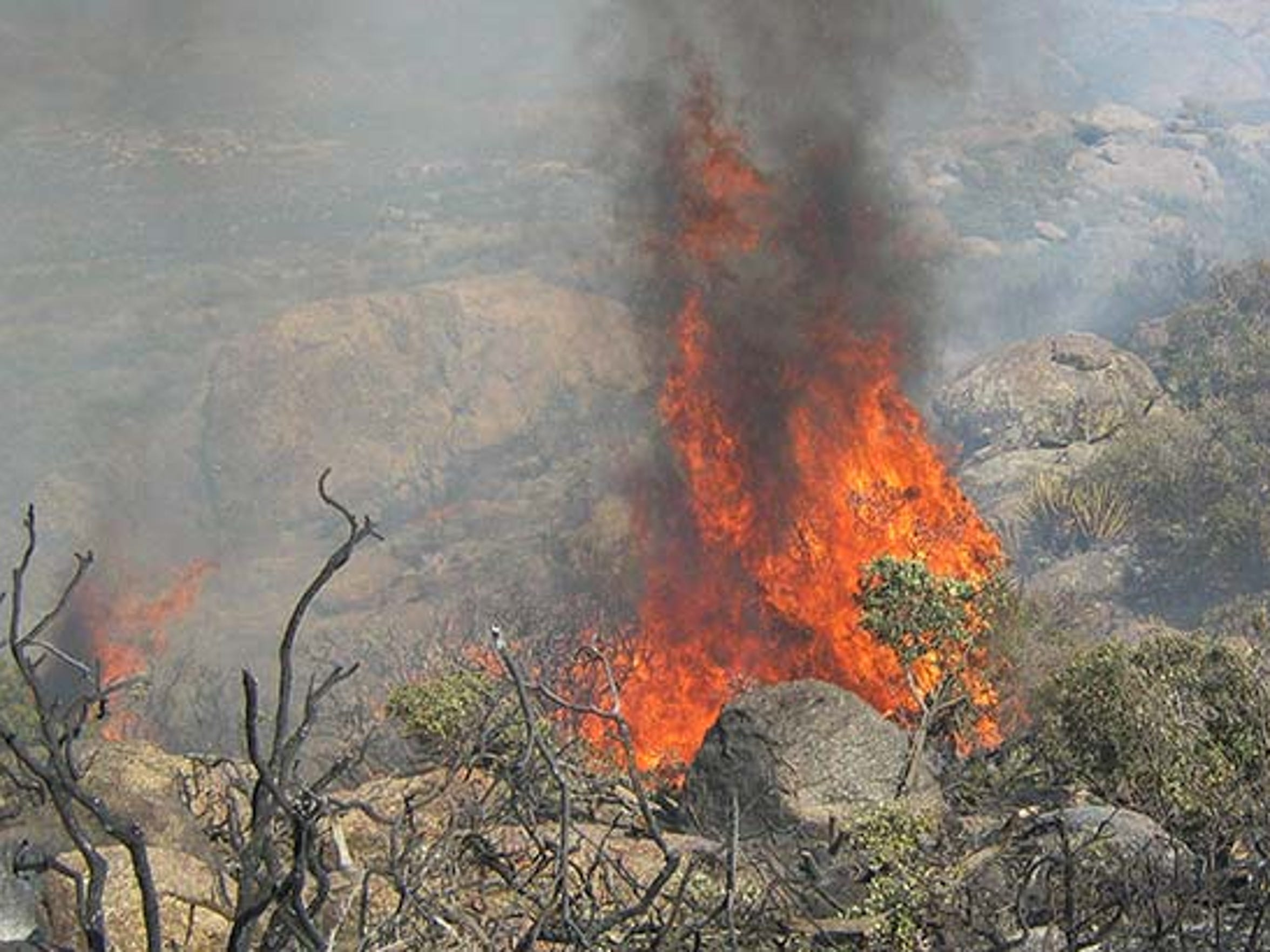 The fire flared up in dry brush on Saturday.