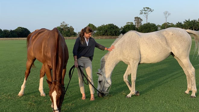 Brittany Halstead stands with two polo retirees, Dos Equis, left, and Noviembre at Santa Clara Polo Club in Wellington.