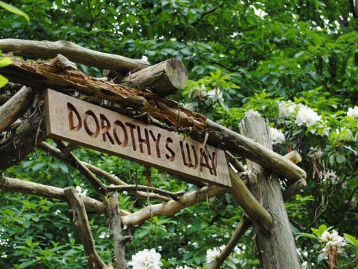 Dorothy's Way is a tribute to Dorothy Knippenberg,