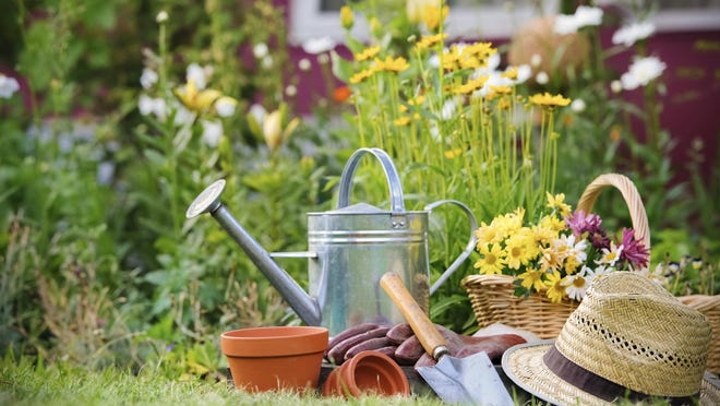 Spring is just around the corner and March is one of the busiest months in the garden.