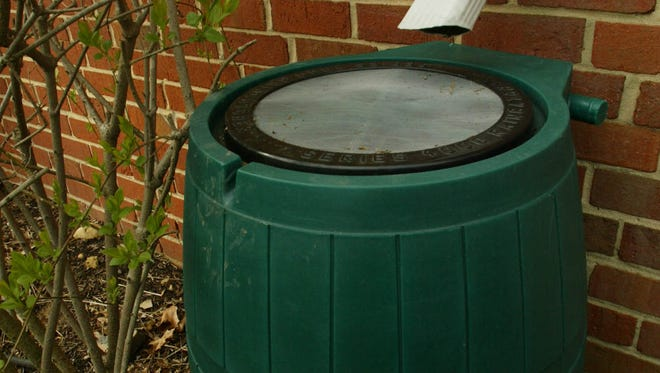 A rain barrel gathers water that might otherwise have come from the spigot.
