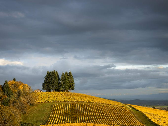 18. Pacific Northwest Wine Country Road Trip Starting