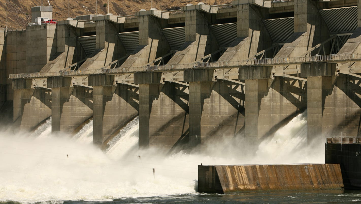 the background and endangerment of the snake river salmon Four huge dams on the lower snake river have contributed to several species of salmon being placed on the endangered species list removing the dams would help restore the salmon and a way.