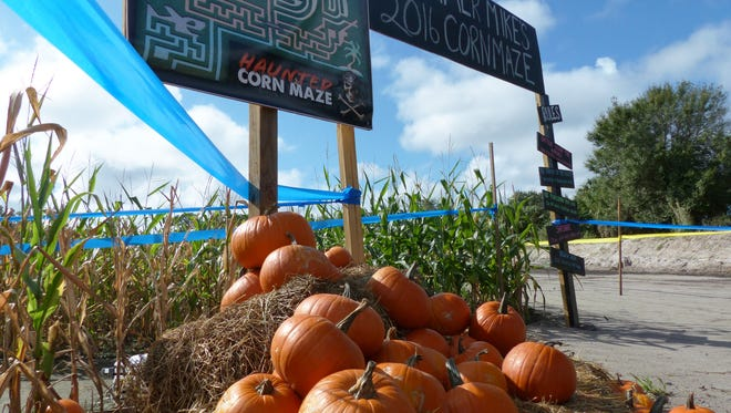 The entrance to the annual corn maze at Farmer Mike's U Pick in Bonita Springs.