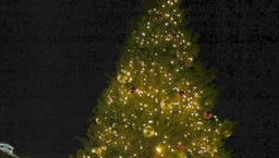 Holiday Magic Downtown begins at 5 p.m. today, Dec. 4, in the mini-park in downtown Alexandria and will feature lighting of the Christmas tree.
