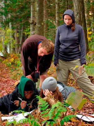 Working at Stratton Pond: UVM LANDS program students, clockwise from top left, James Pospishil, Sarah Rosenblatt, Shannon Scarbrough, Flore Costumé.