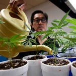 Voters, Prop. 64 approach a flawed way to legalize pot