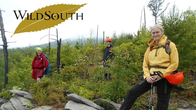 Volunteers with the Linville Gorge Wild South Wilderness Rangers take a break from uprooting princess trees, an invasive species. On March 20, Wild South is hosting an awards gala.
