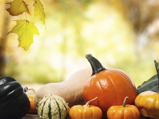 Fall-Autumn