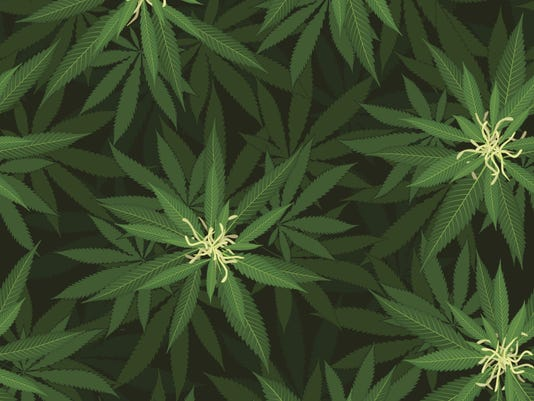 Tennessee hemp dispensary: What to know about Tennessee Hemp
