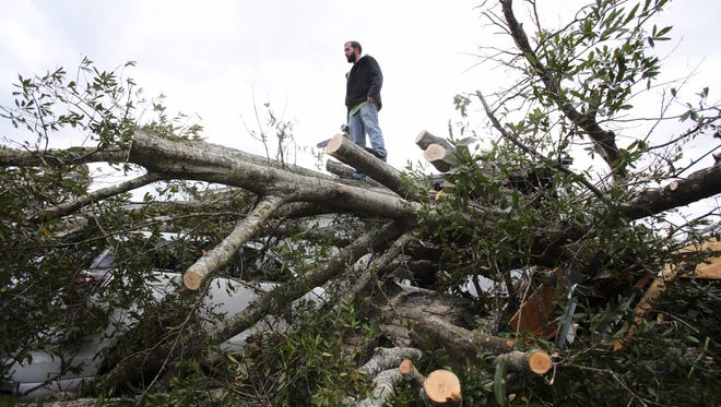 A man stands on top of a fallen tree on a car after tornadoes hit Pensacola, Fla, on Feb. 24, 2016.