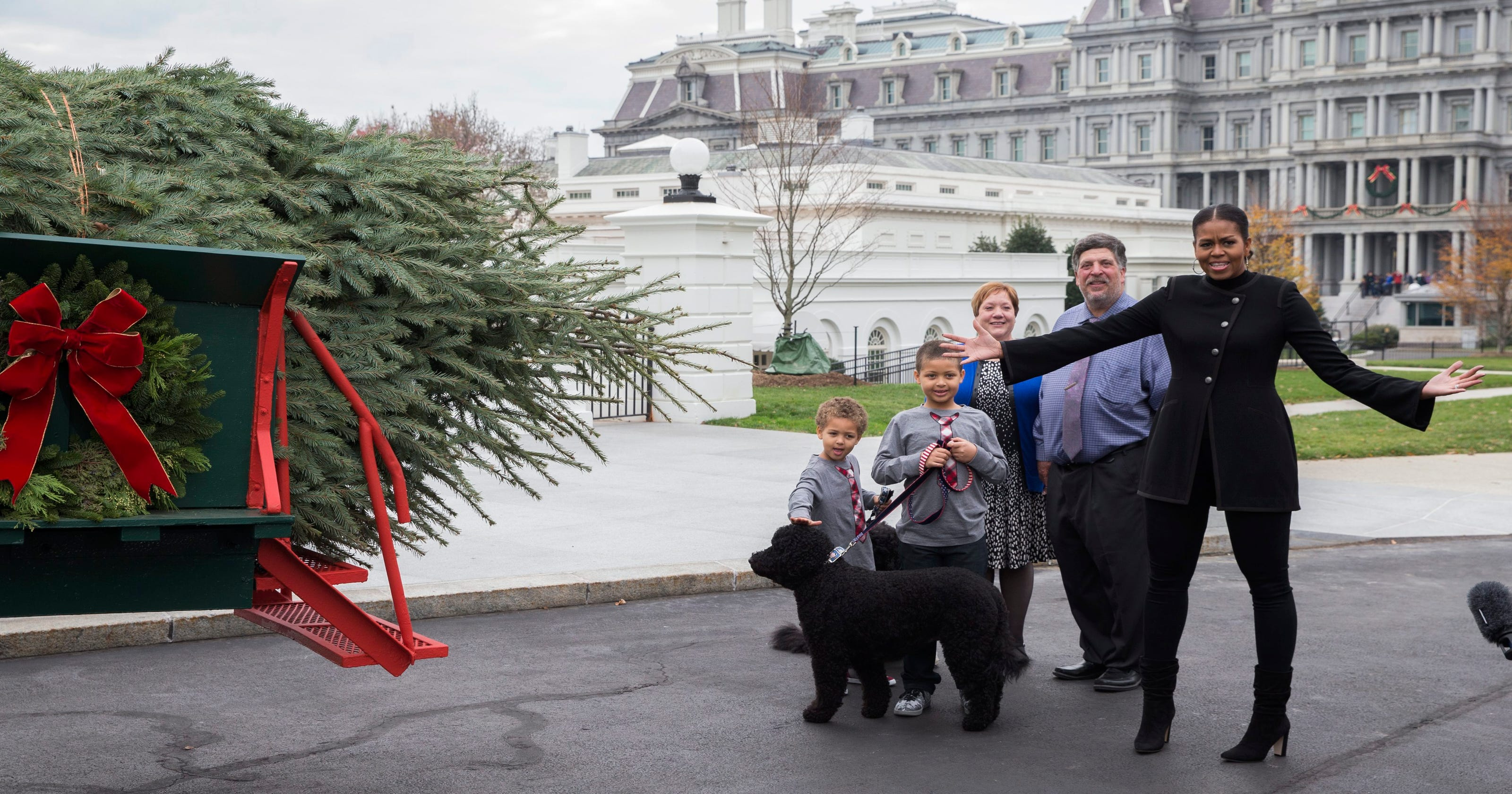 michelle obama welcomes last christmas tree of obama white house