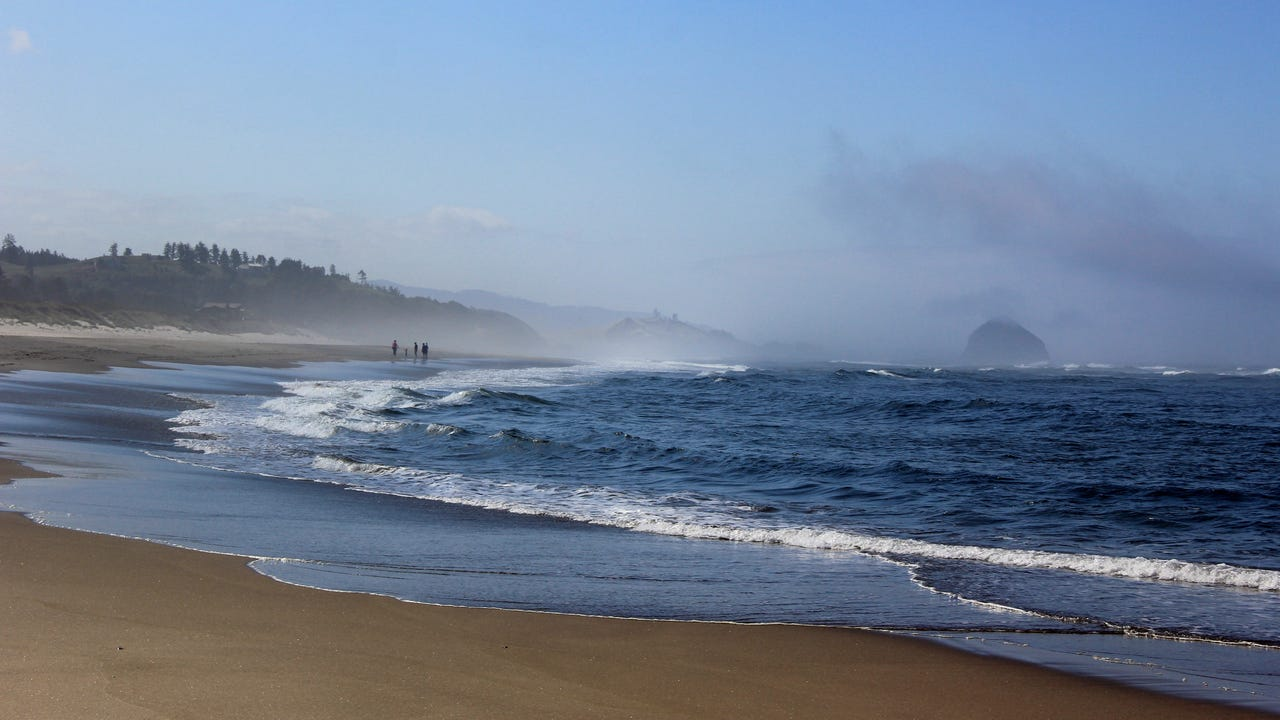 Located north of Pacific City, the area slated to become Oregon's newest state park is known as the Beltz Property and features estuary, wildlife, dunes and beachfront on the Oregon Coast.