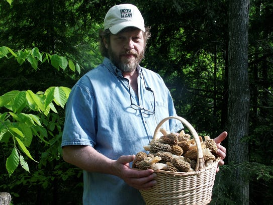 "Anthony ""Tony"" Williams has picked thousands of morel"