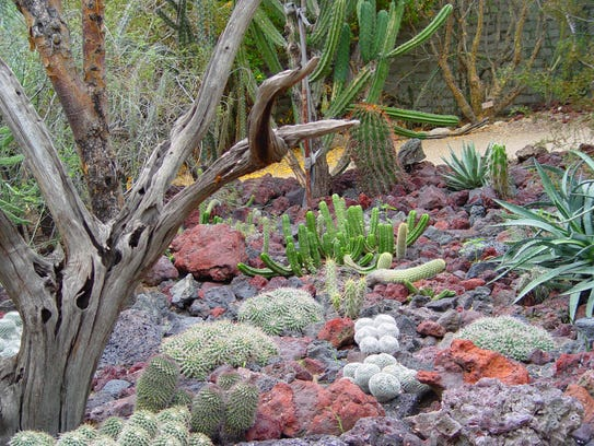 The Moorten Botanical Garden's scaled down lava flow