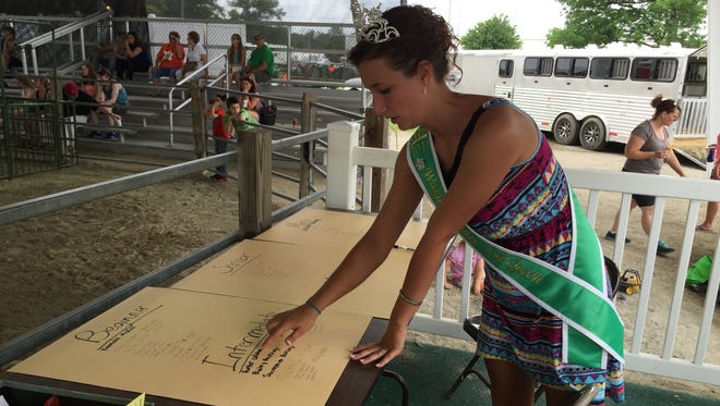 Makayla Crossley, the 2015 Wayne County 4-H Fair Queen, counts competitors in a swine showmanship competition to be sure she has enough ribbons for each class. Crossley was a 4-H'er for 10 years.