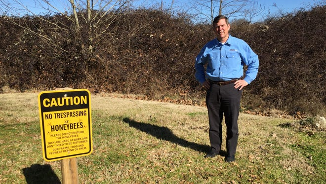 Mauldin dentist Julian Thomas stands outside his office where his three beehives once stood. The hives were stolen over the weekend.
