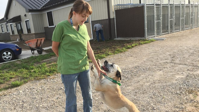 Salena Gomez takes Spot out for a walk at the new Humane Society of Sandusky County building at 1315 N. River Road.