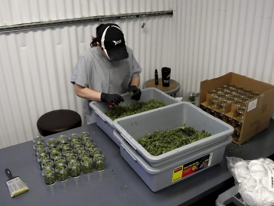 In this Friday, March 22, 2019 photo, Paige Dellafave-DeRosa, a processing supervisor at Compassionate Care Foundation's medical marijuana dispensary in Egg Harbor Township, N.J., sorts marijuana buds. Lawmakers are poised to vote on making New Jersey the 11th state to legalize recreational marijuana for adults.