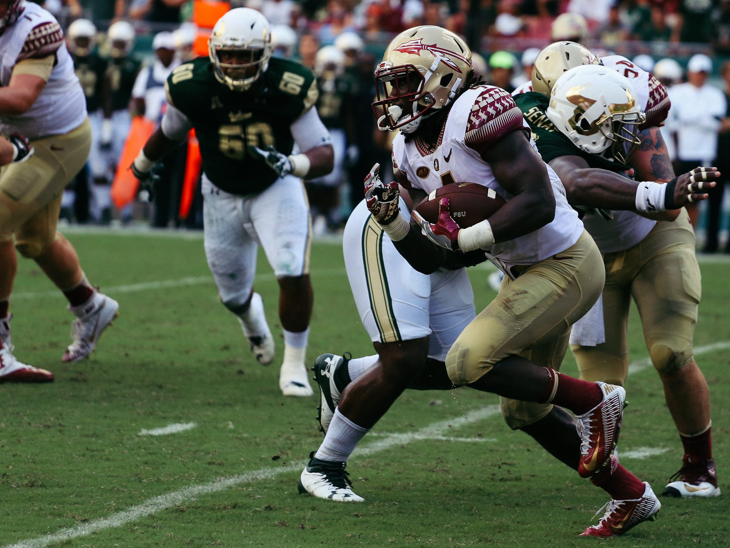 Cook rushed 28 times for 267 yards and a touchdown against USF, the second most all-time at FSU for a single-game performance.