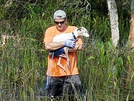 Robert Betzinger carries Heidi, a whippet, out from