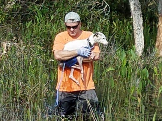 Robert Betzinger carries Heidi, a whippet, out from