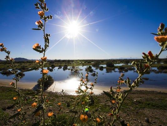 Gila River water