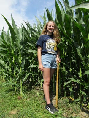 """Mary Miller, daughter of Mark and Rose Miller of rural Neponset, this year's """"Knee High by the 4th of July Girl,"""" measured the height of the corn on her father's farm at 7 feet 9 inches Wednesday. Miller, who is 5 feet 7 inches tall, said the Pioneer 1197 variety was planted April 21. Mary is a sophomore at Kewanee High School and a member of the Kewanee FFA Chapter."""