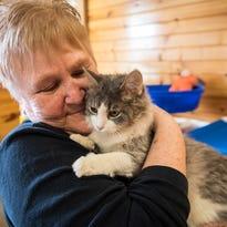 Volunteers, county slash shelter's kill rate