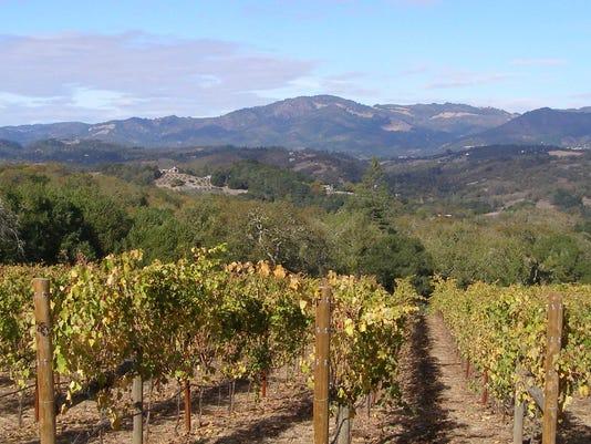 636461916156799803-Sonoma-County-vineyard.-Image-via-Wikipedia.jpg