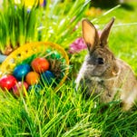 Celebrate Easter with the Easter Bunny