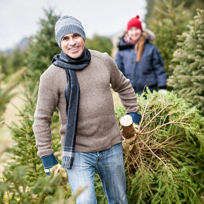 Where to cut down your own Christmas tree this year near Louisville