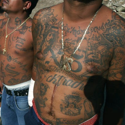 Donald Trump is right. MS-13 members are 'animals.'