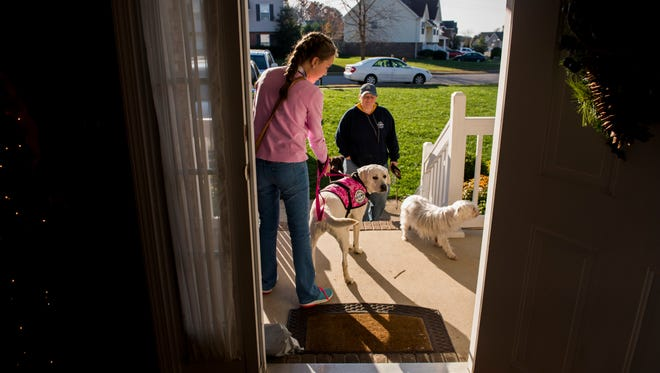 Haley is directed by Cheri Campbell, a service dog trainer, as her and Mavis leave the house to go out to the store together on November 14, 2017.