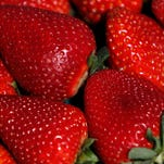 Jury rules with school in fight over California strawberries