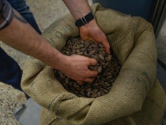 Peru cocoa seeds used in the Peru chocolate bar made