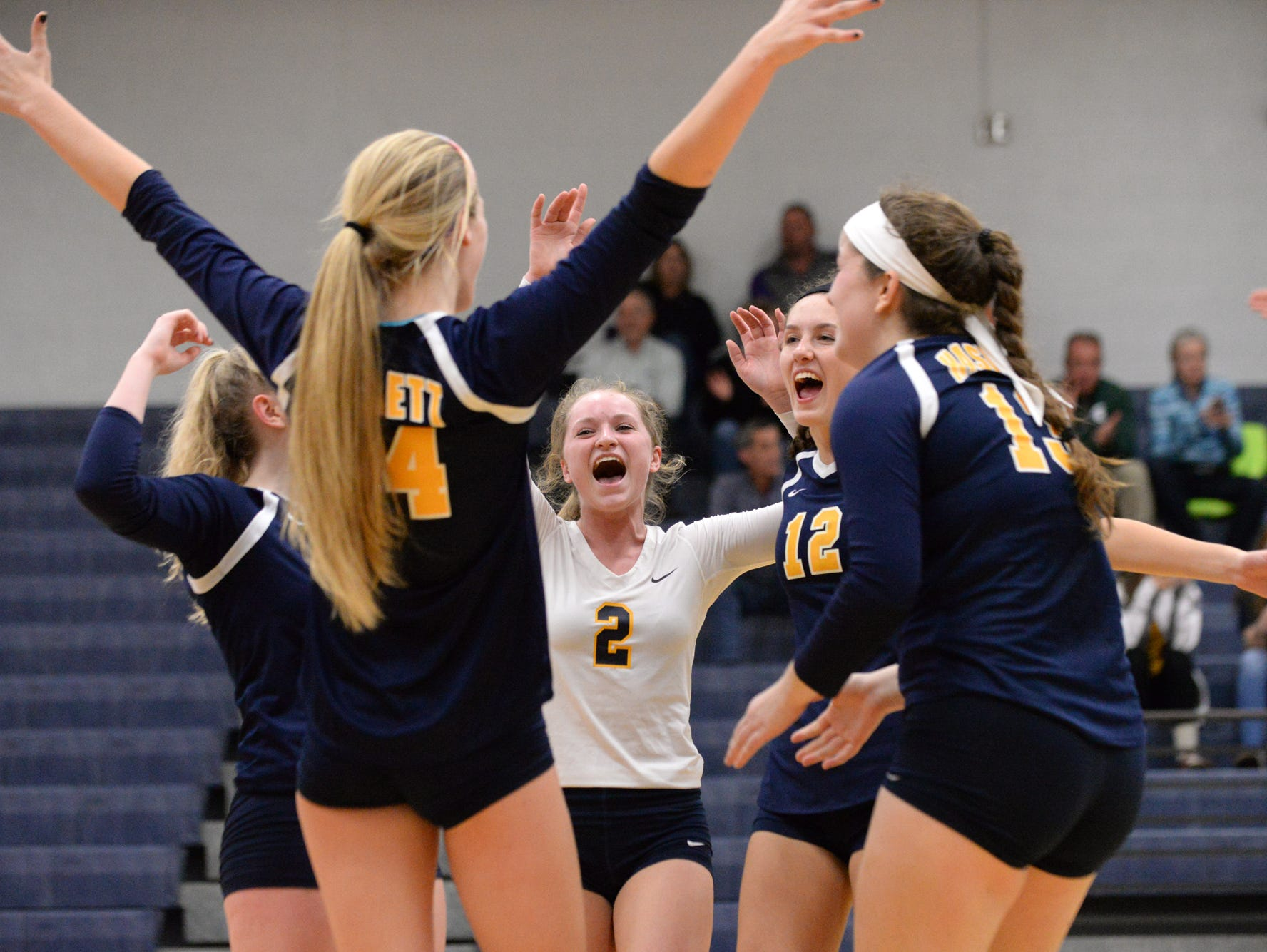 Haslett's Jordan Valley and Brittany Bradley celebrate with the rest of the team after defeating Williamston in three sets during the Class B Volleyball District Tournament at Haslett High School.