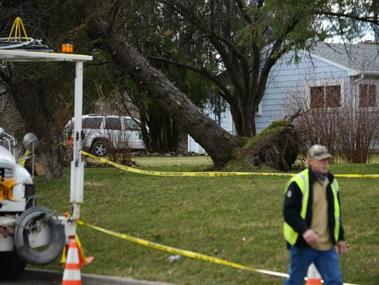 BWL crews work on power lines by a downed tree on Thursday,