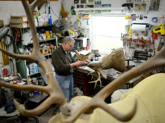 Taxidermist Mark Esch works on a deer on Friday, May