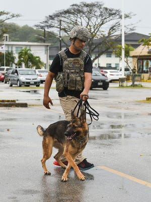 The U.S. Airforce Security Forces K9 unit respond to a bomb threat at Agana Shopping Center on Jan. 31.