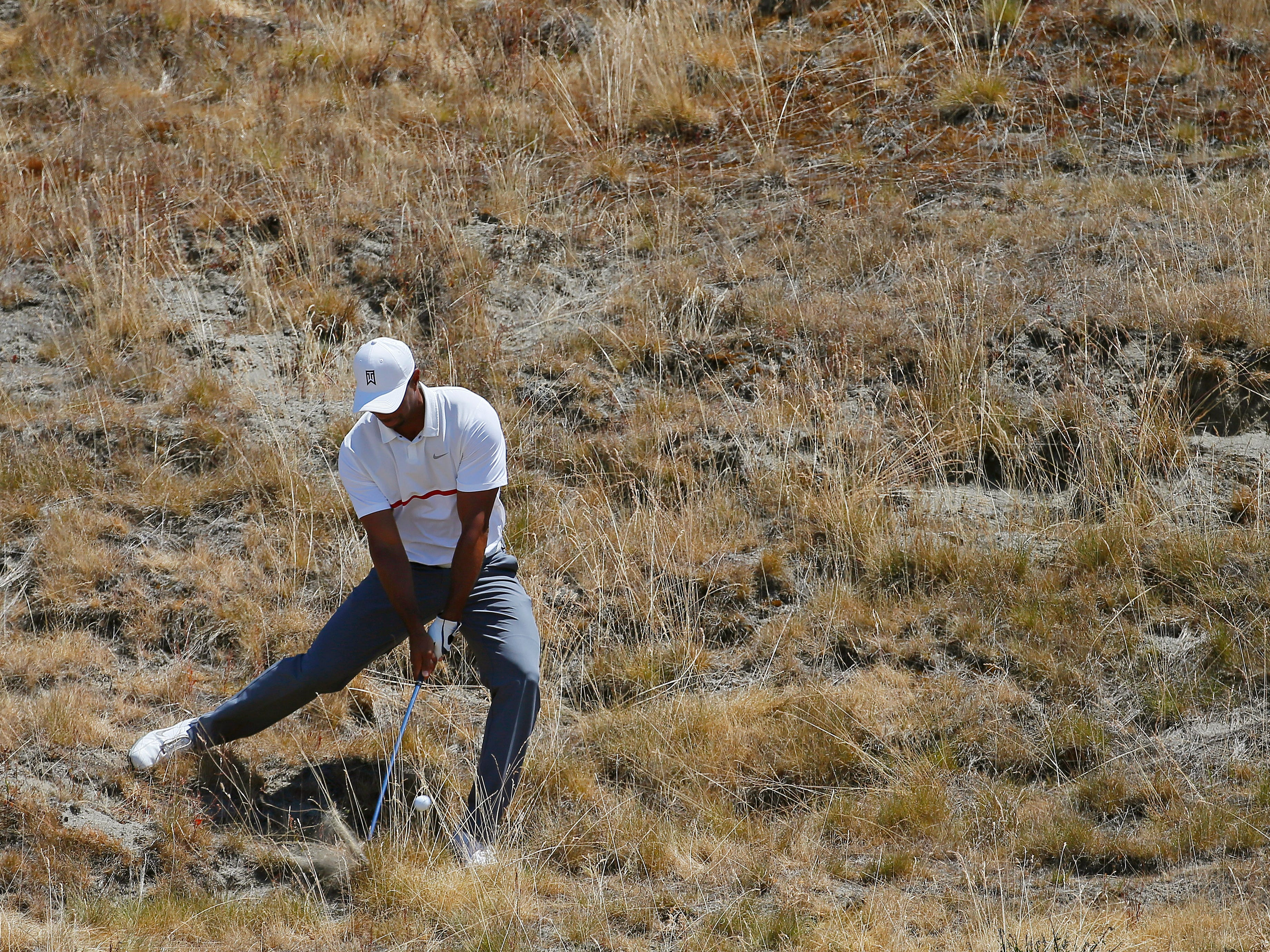 Tiger Woods hits out of the tall fescue grass on the eighth hole during the second round of the U.S. Open golf tournament at Chambers Bay on Friday, June 19, 2015 in University Place, Wash. (AP Photo/Matt York)
