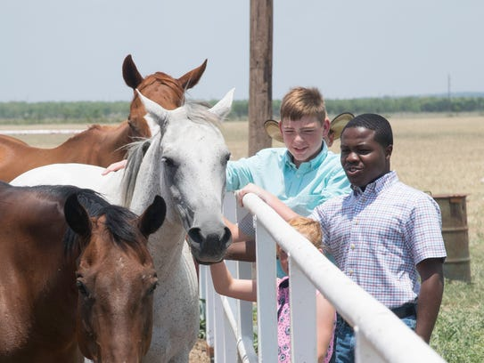 Horses come to the fence for a little attention at the West Texas Boys Ranch. Volunteers at the ranch help boys develop the skills and emotional maturity needed to thrive in adulthood.