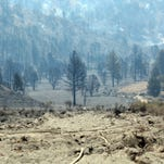 Record temperatures are making wildfires worse. And it's only getting hotter.