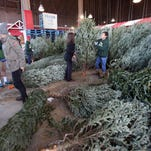 10 things to know before Christmas tree shopping