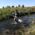 Holy cow, Cubs fans: How Iowa can win on water quality