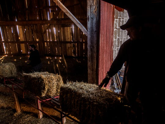 Dylan Preston loads hay with farm hand Greg Armell