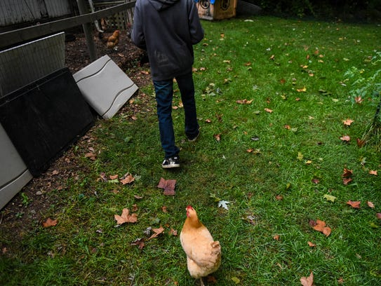Bob Epler and his family are raising chickens in Annville