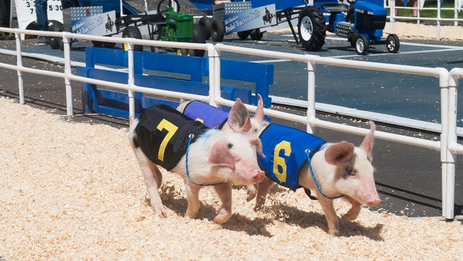 The Marion County Fair on July 6, 2017, at the Oregon State Fairgrounds. The fair is held July 6-9.